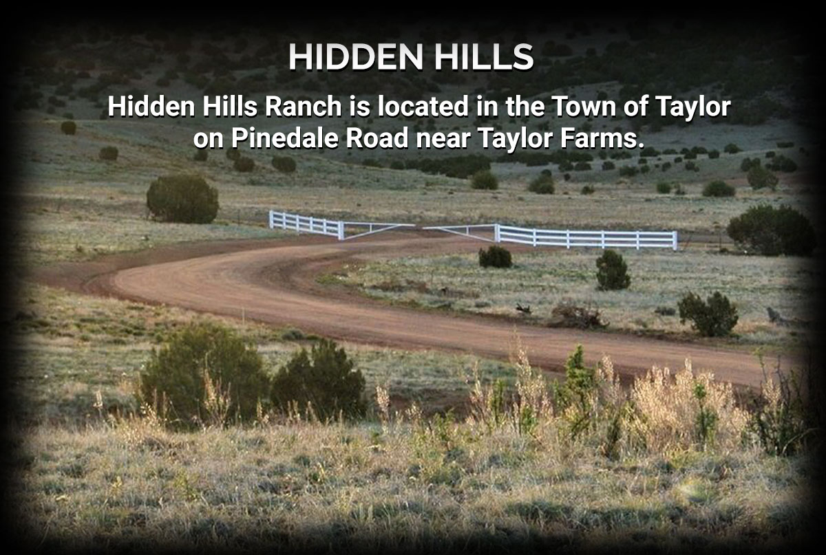 Hidden Hills Ranch in Town of Taylor Arizona