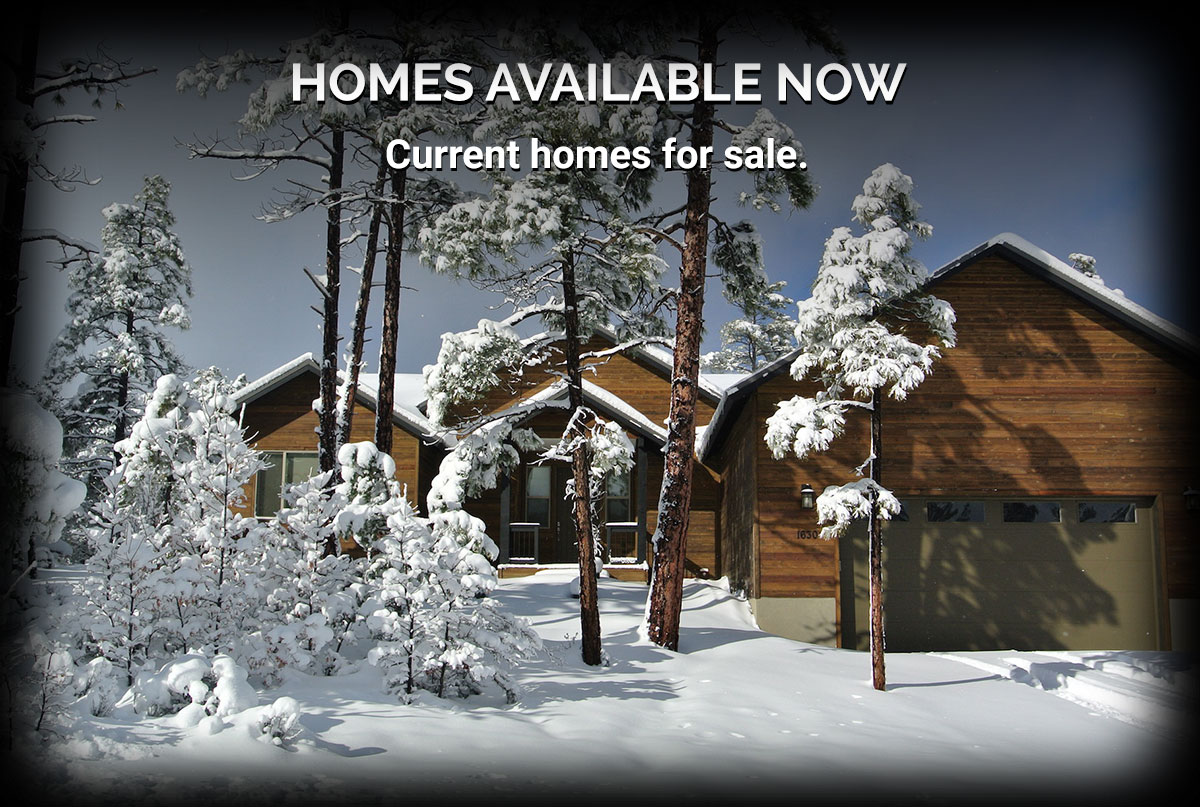 Arizona Realty Homes Available Now